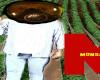 gm-crops-farmer-to-farmer-video-1024w