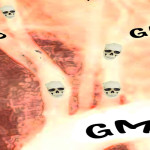 Toxin from GM crops found in human blood, study