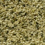 Hemp Seeds Are Nutritious Superfood