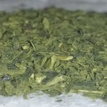 Discover Moringa Superfood Treasure