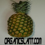 pineapple-enzyme-bromelain-has-cancer-fighting-abilities150w