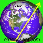 cesium-levels-continue-to-rise-in-pacific-ocean-and-plankton150w