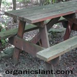 No Picnic with Arsenic in Wooden Picnic Tables