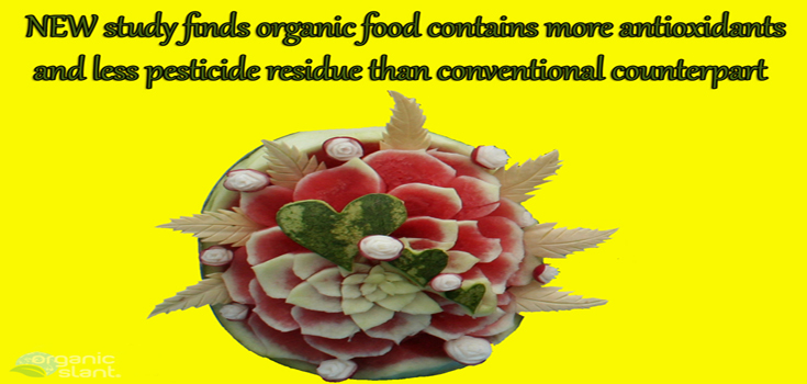 new-study-finds-organic-food-contains-more-antioxidants-735w350