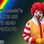 McDonald's says no to GMO potato