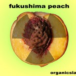 0000068-fukushima-peaches-to-be-eported-to thailand