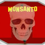 Main ingredient in Monsanto's Roundup herbicide glyphosate labeled probably carcinogenic