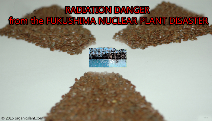 radiation-danger-from-the-fukushima-nuclear-plant-disaster-in-japan-settling-on-the-west-coast-of-united-states-700w