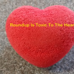Roundup Is Toxic To The Heart