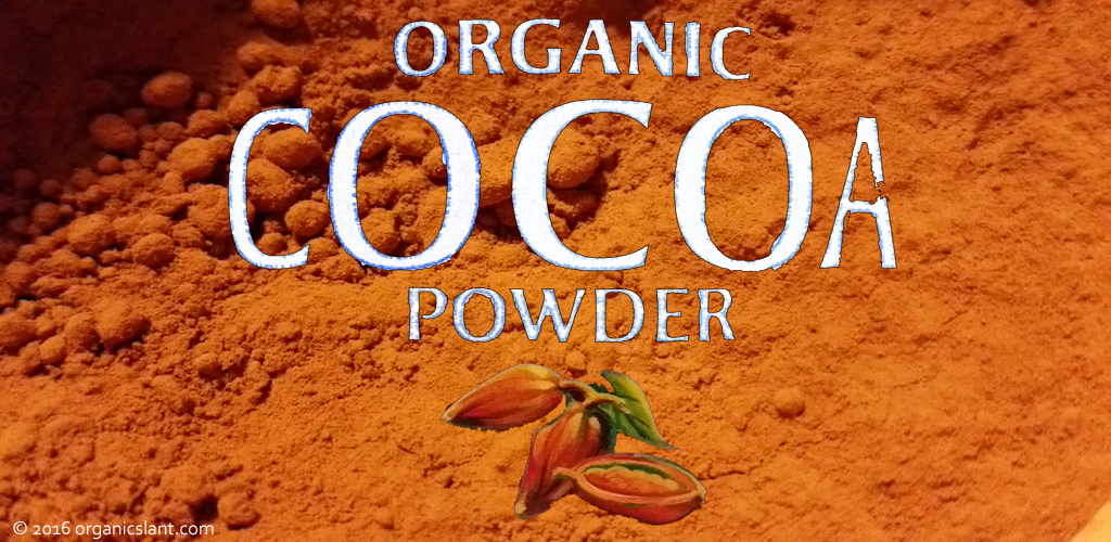 dietary-cocoa-flavanols-improve-blood-vessel-function-in-patients-with-kidney-dysfunction-1024