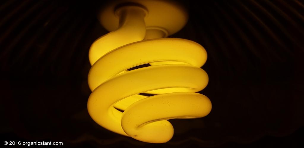 harmful-effects-of-cfl-bulbs-to-skin-1024w