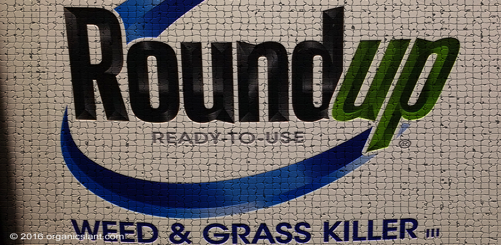monsantos-glyphosate-now-most-heavily-used-weed-killer-in-history-1024w