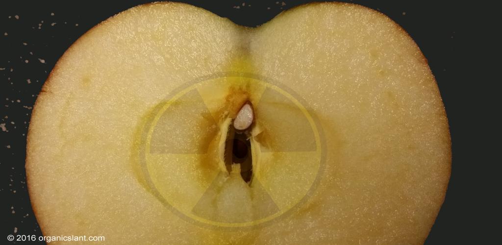 radiation-protection-with-apple-pectin-1024w