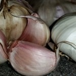 aged-garlic-extract-can-reduce-dangerous-plaque-buildup-in-arteries-1024w