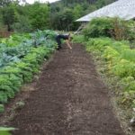 Gardening helps to grow positive body image